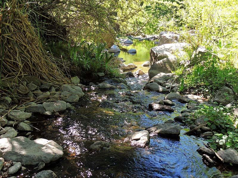 Reserva natural Vaquerías en el Valle de Punilla